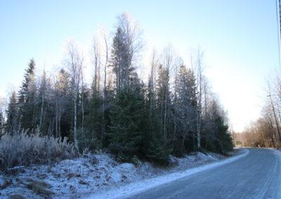 Tontti, Koivuluodontie, 94430 Tornio